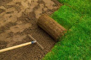 ukrudtsfri græsplæne