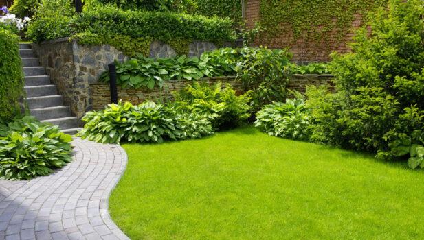 Have med buske og planter